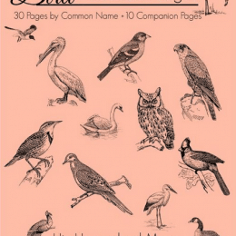 Free Birds Notebooking Pages ($7.99 Value!) - Limited Time!