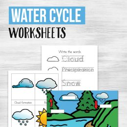 FREE Water Cycle Worksheets