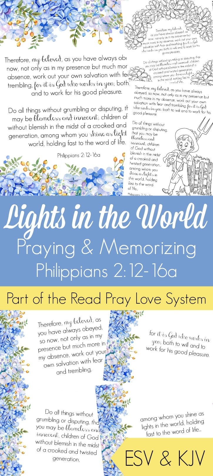 Free Lights in the World Bible Challenge