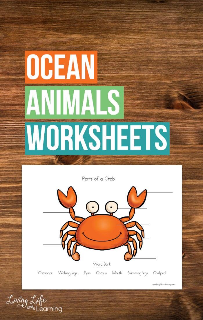 Free Ocean Animals Science Worksheets