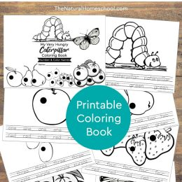 Free Very Hungry Caterpillar Numbers & Colors Coloring Book