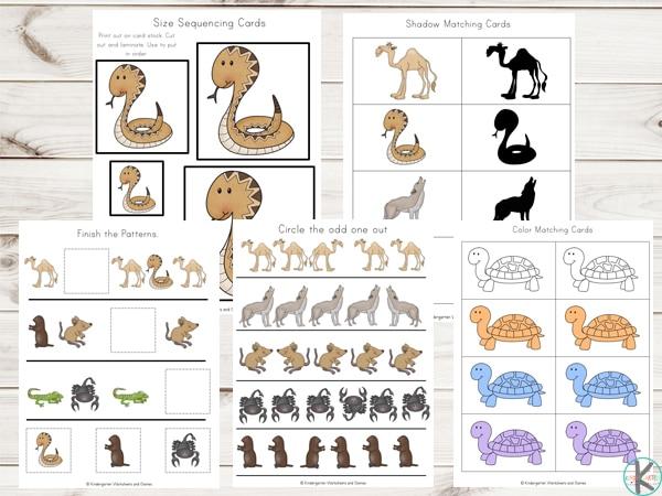 Free Desert Animals Learning Pack