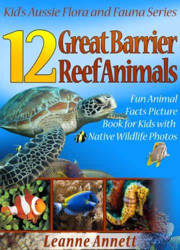 12 Great Barrier Reef Animals