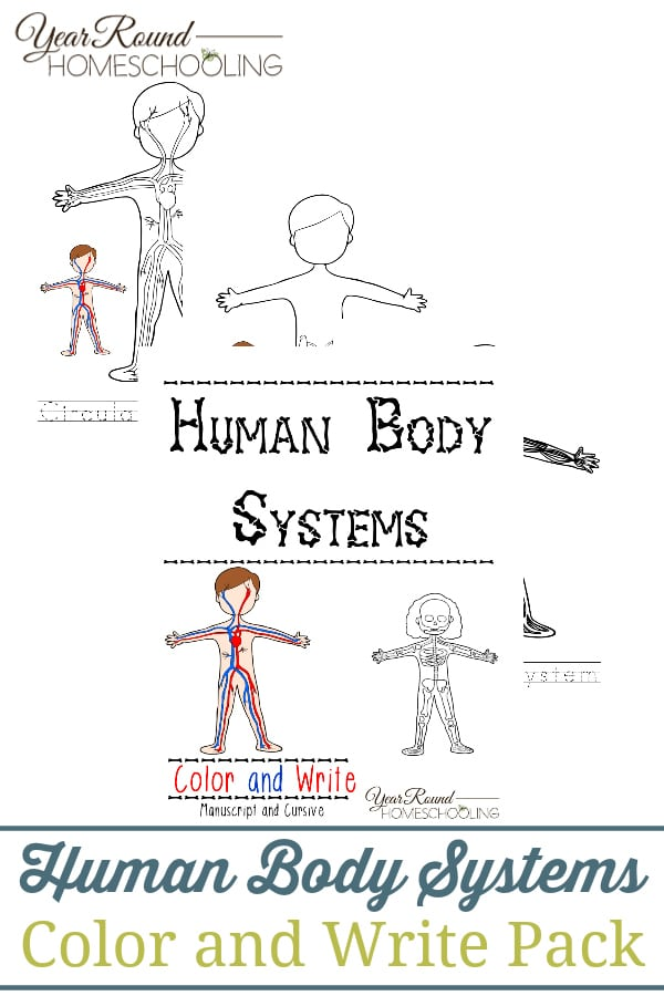Free Human Body Systems Color & Write Pack