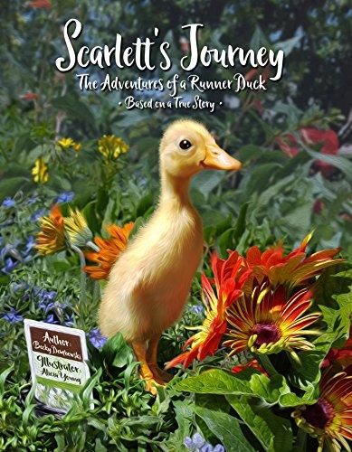 Scarlett's Journey