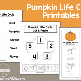 Free Pumpkin Life Cycle Printable Pack