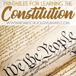free printable constitution activities