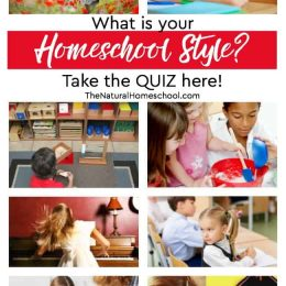 What is your Homeschool Style? Take the Quiz!