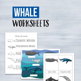 FREE Whale Writing and Vocabulary Worksheets and Printables