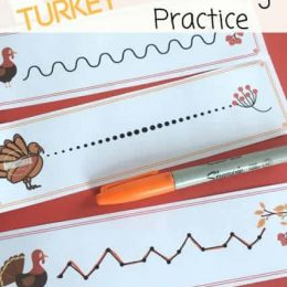 FREE Turkey Pre-Writing Practice Sheets