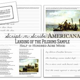 FREE Pilgrims Art and Poetry Study