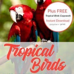 tropical birds unit studies and printables