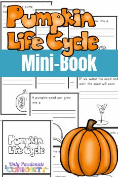 FREE Pumpkin Life Cycle Mini-Book