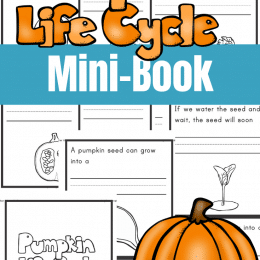 For your Fall science lessons, check out this FREE Pumpkin Life Cycle Mini-Book! #fhdhomeschoolers #freehomeschooldeals #fallresources #homeschoolscience #hsmoms