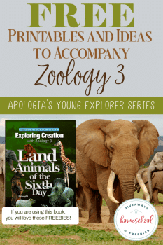 FREE Printables and Ideas for Apologia's Zoology 3: Land Animals