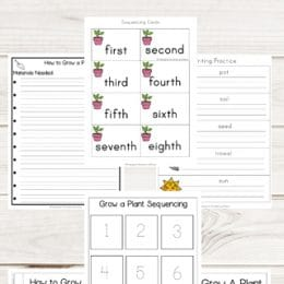 FREE How to Grow a Plant Sequencing Worksheets