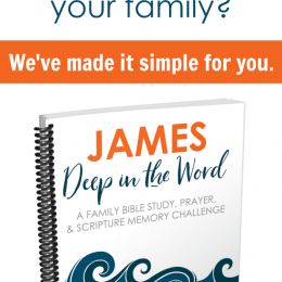 FREE 2019 Monthly Bible Study: James
