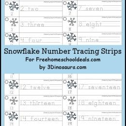 FREE Snowflake Number Tracing Strips (Instant Download)