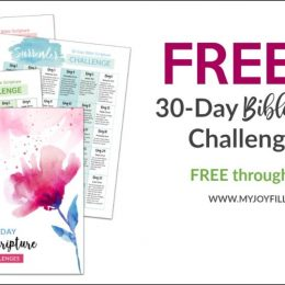 FREE 30-Day Bible Challenge Pack (FREE until 3/13/19!)