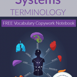 FREE Human Body Systems Terminology Notebook