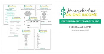 FREE Homeschooling on One Income Strategy Guide