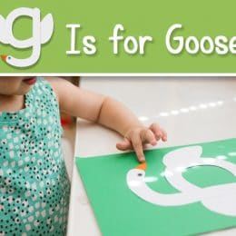 FREE G is for Goose Craft
