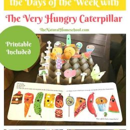 FREE The Very Hungry Caterpillar Lesson Printables