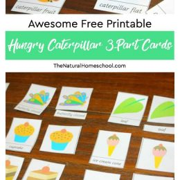FREE Hungry Caterpillar 3-Part Cards