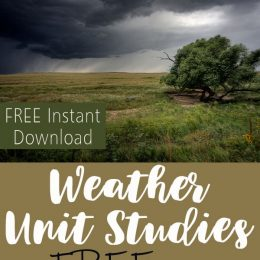 FREE Weather Unit Studies: Thunderstorms
