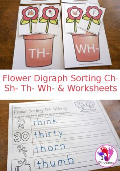 FREE Flower Digraph Sorting Activity & Worksheets