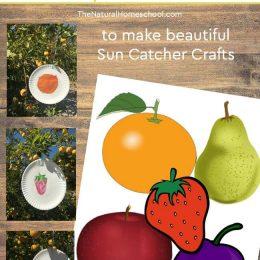 FREE Hungry Caterpillar Sun Catcher Craft Templates