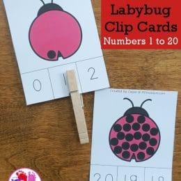 FREE Ladybug Number Clip Cards