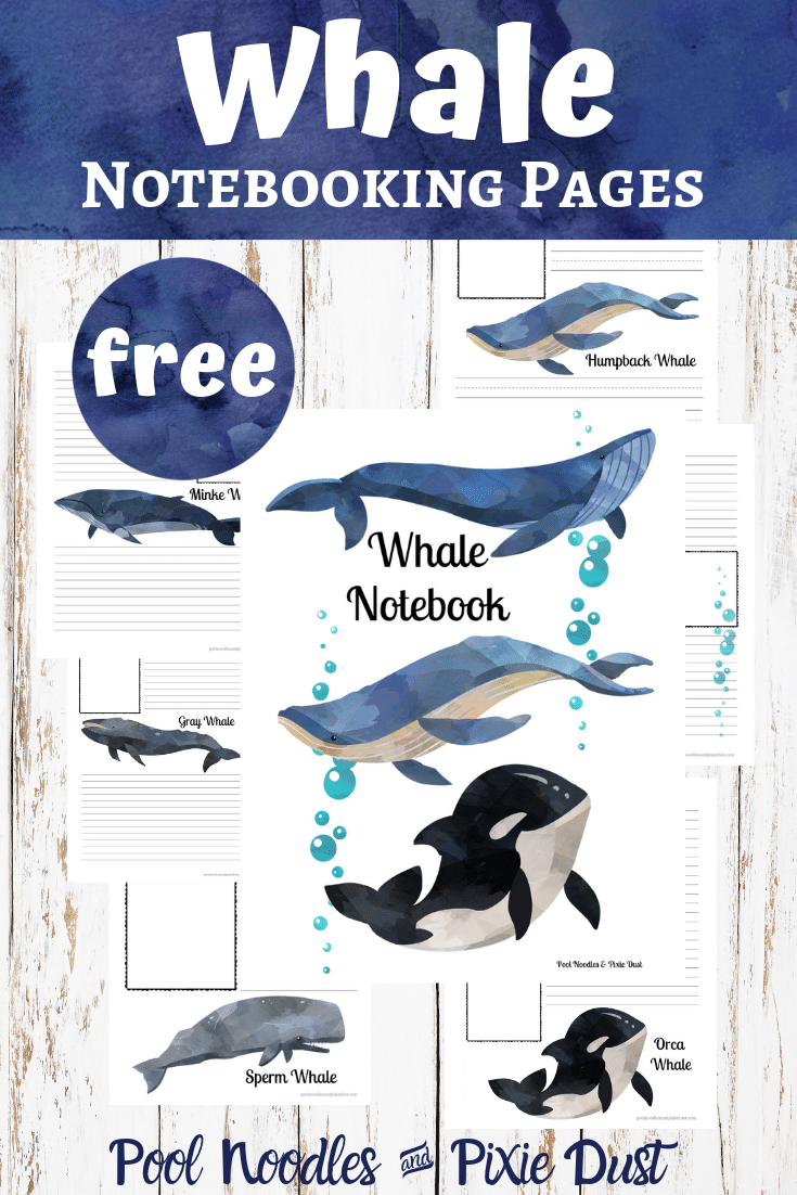 FREE Whale Notebooking Pages