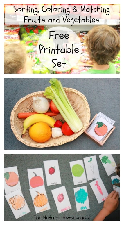 FREE Printable Set: All About Fruits & Vegetables