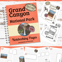 Build fun geography lessons with these FREE Grand Canyon Notebooking Pages! #fhdhomeschoolers #freehomeschooldeals #hsfreebies #hsdays #homeschoolers