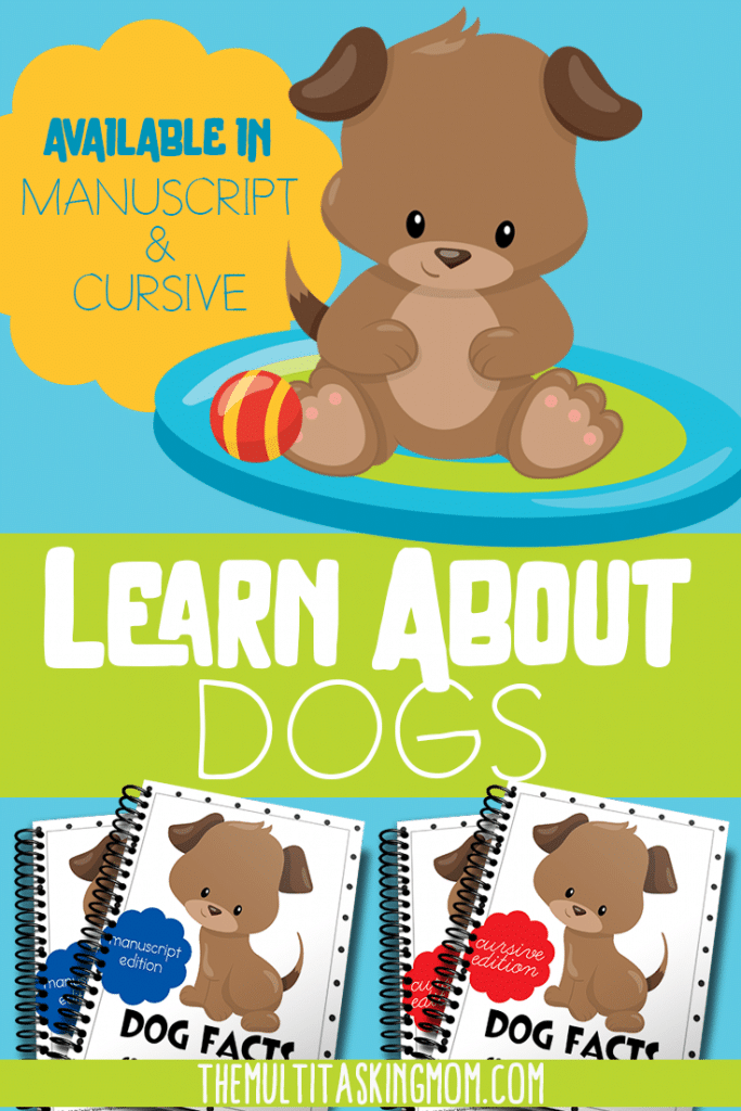 Did you know the Labrador is the most popular dog in the world? Learn this and more in the FREE Dogs Color & Copywork pack. Available in manuscript and cursive. #dogs #copywork #freehomeschooldeals #fhdhomeschoolers