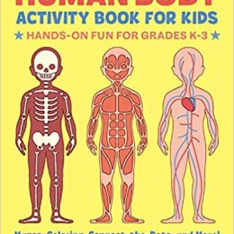 Get this Amazon Deal: 23% Off Human Body Activity Book! #fhdhomeschoolers #freehomeschooldeals #amazondeals #homeschoolscience #hsdays