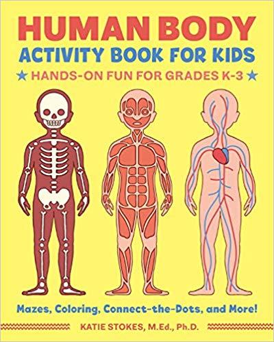Get this Amazon Deal: 23% Off Human Body Activity Book! #fhdhomeschoolers #freehomeschooldeals #amazondeals #homeschoolscience #hsdays