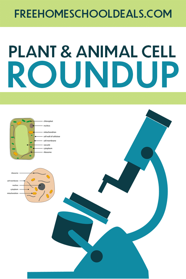 For your budding biologist, check out FHD's (and more!) FREE Plant and Animal Cell Resources! #fhdhomeschoolers #freehomeschooldeals #hsmoms #hsdays #homeschoolscience
