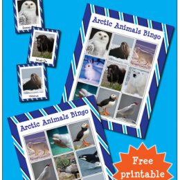 Arctic Animals Bingo Game.