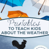 FREE Printables All About Weather.