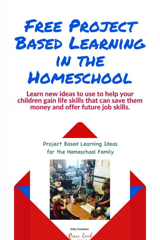 FREE eBook of Project-Based Learning in the Homeschool. #projectbasedlearning #homeschoolprojects #fhdhomeschoolers #freehomeschooldeals