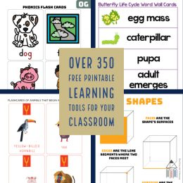 For great lessons in your homeschool, check out these FREE Printable Learning Tools! #fhdhomeschoolers #freehomeschooldeals #hsmoms #learningtools #primary