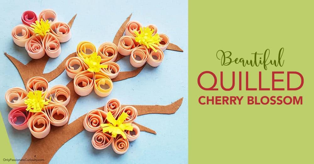 Beautiful DIY Cherry Blossoms Craft. #fhdhomeschoolers #freehomeschooldeals #cherryblossomcraft #Japancraft