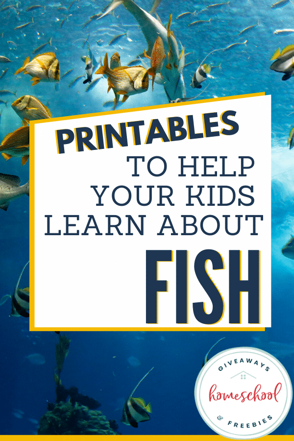 All About Fish Resources and Freebies. #allaboutfish #fishresources #fishfreebies #fhdhomeschoolers #freehomeschooldeals
