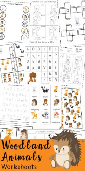 FREE Adorable Woodland Animals Worksheets. #woodlandanimals #woodlandanimalworksheets #fhdhomeschoolers #freehomeschooldeals