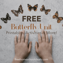 FREE Butterfly Unit: Printables, Activities & More!