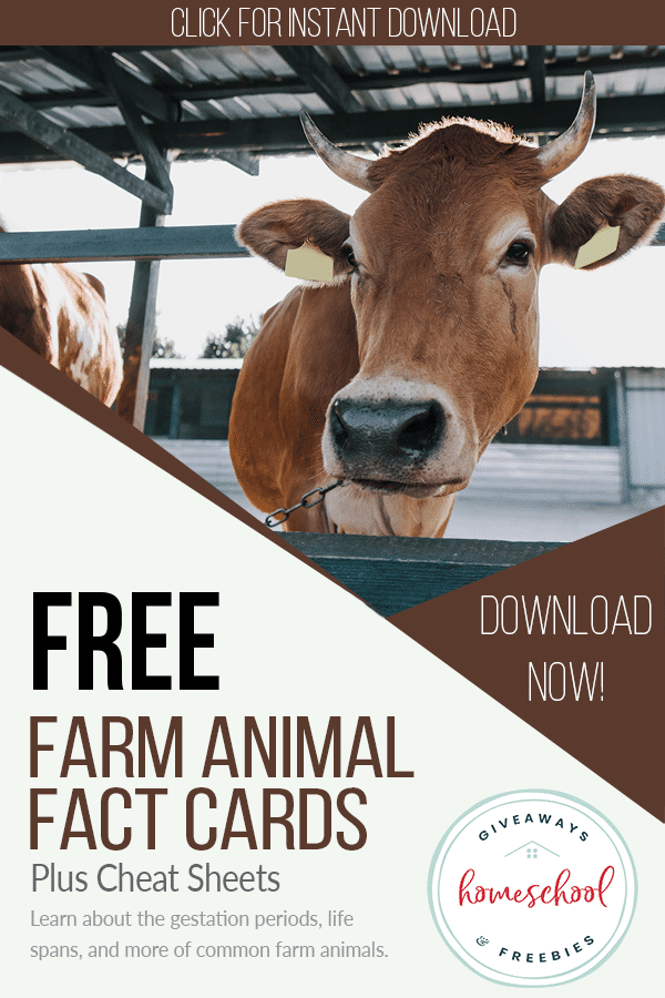 FREE Cheat Sheets and Fact Cards for Farm Animals. #freehomeschooldeals #fhdhomeschoolers #farmanimals #farmanimalcheatsheets #farmanimalfactcards