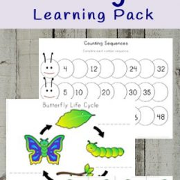 FREE Butterfly Life Cycle Worksheets. #fhdhomeschoolers #freehomeschooldeals #butterflylifecycleresources #butterflythemedprintables #butterflylifecycle