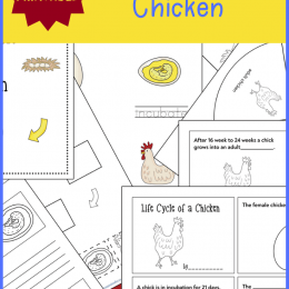 This spring, learn about life and growth with this FREE Life Cycle of a Chicken Unit Study! #fhdhomeschoolers #freehomeschooldeals #science #lifecycles #hsmoms